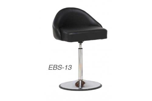 EBS-13